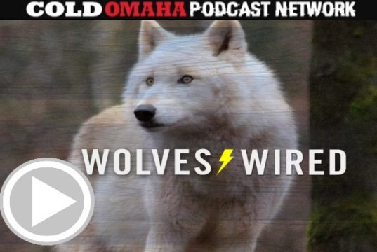 Wolves Wired